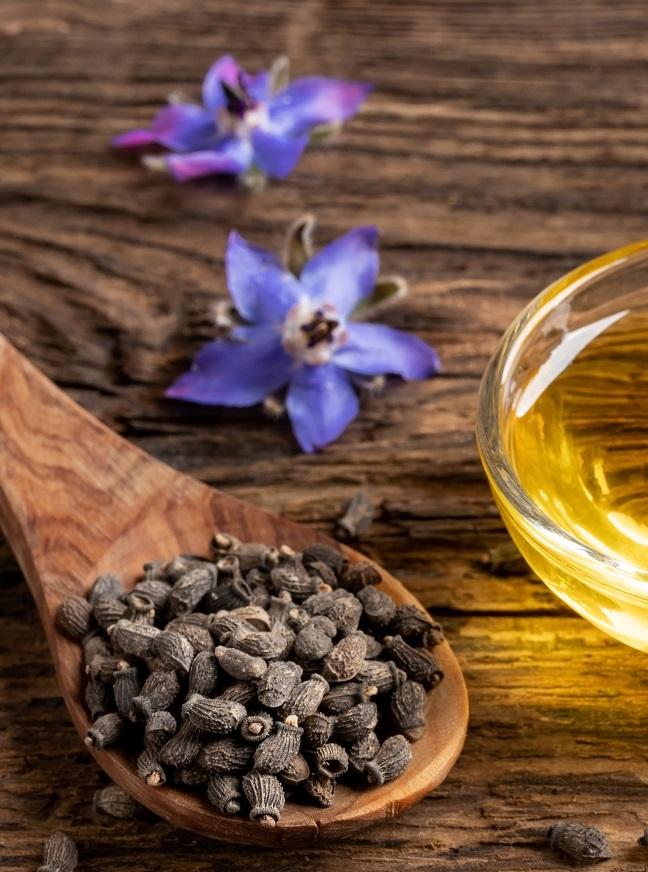 exemple huile de bourrache