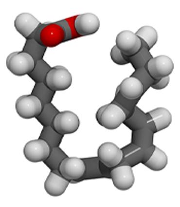 schéma Acide alpha-linoléique
