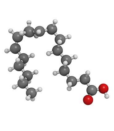 schéma Acide Linoléique