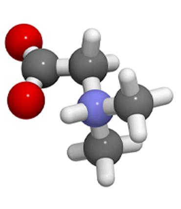 Schéma Diméthylglycine