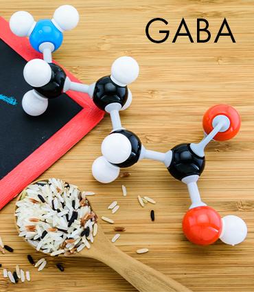 GABA (acide gamma-aminobutyrique)