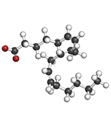 schéma Acide Gamma-Linoléique