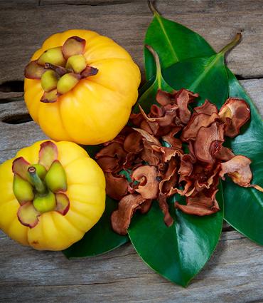exemple Garcinia cambogia