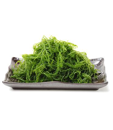 exemple Laminaria japonica